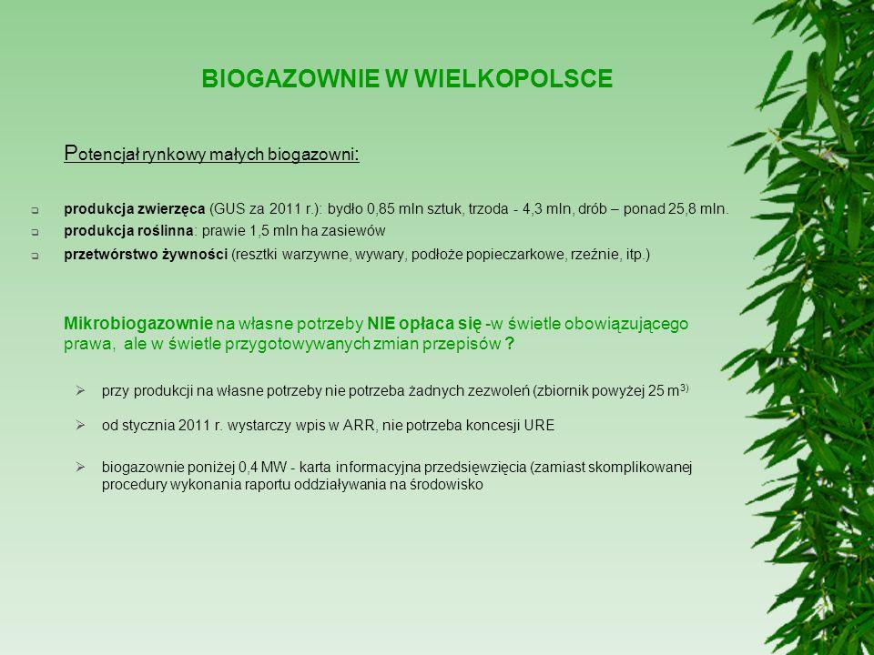 BIOGAZOWNIE W WIELKOPOLSCE P otencjał rynkowy małych biogazowni :  produkcja zwierzęca (GUS za 2011 r.): bydło 0,85 mln sztuk, trzoda - 4,3 mln, drób