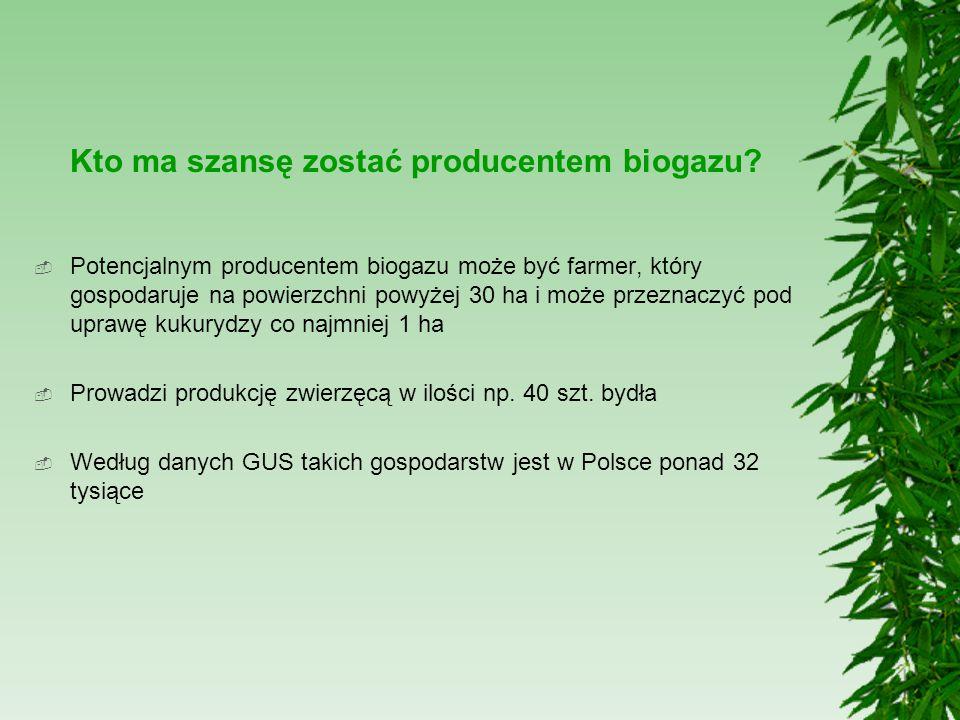 Kto ma szansę zostać producentem biogazu?  Potencjalnym producentem biogazu może być farmer, który gospodaruje na powierzchni powyżej 30 ha i może pr