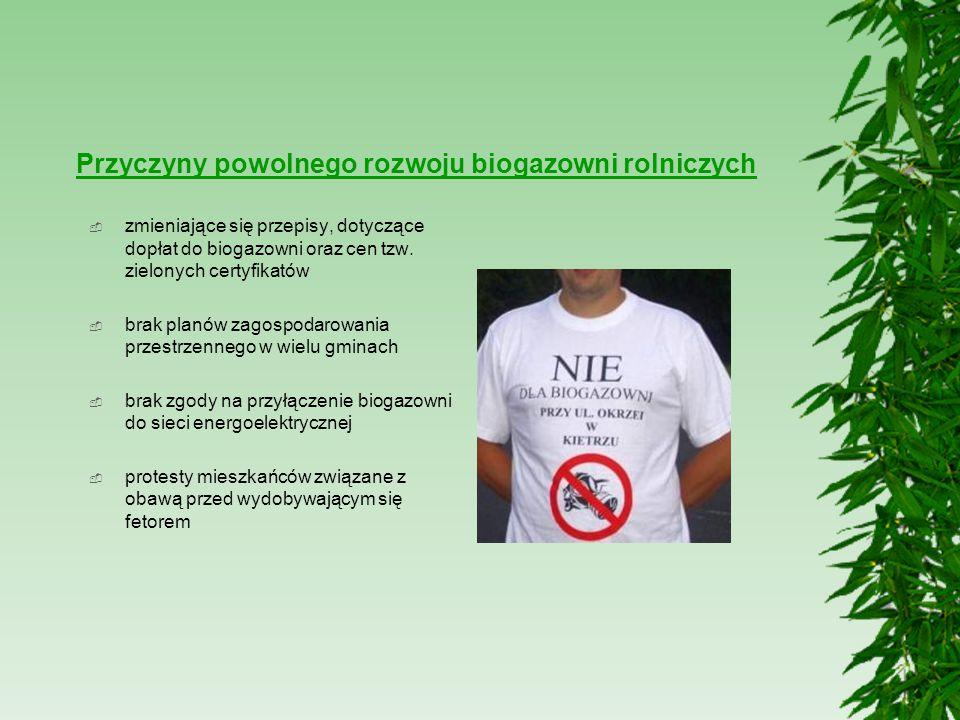 Przyczyny powolnego rozwoju biogazowni rolniczych  zmieniające się przepisy, dotyczące dopłat do biogazowni oraz cen tzw. zielonych certyfikatów  br