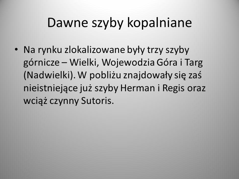 """Istniejący szyb Sutoris czyli """"szewski"""