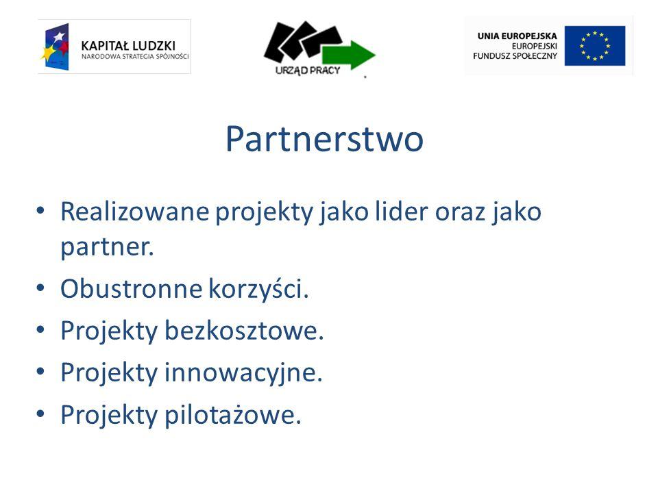 Partnerstwo Realizowane projekty jako lider oraz jako partner.