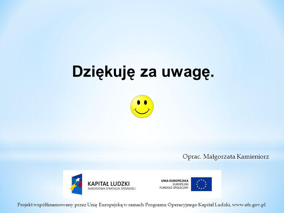 Projekt współfinansowany przez Unię Europejską w ramach Programu Operacyjnego Kapitał Ludzki, www.efs.gov.pl Dziękuję za uwagę.