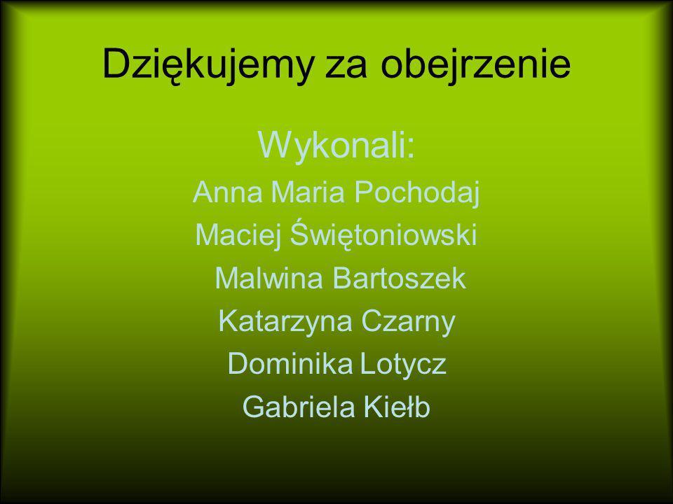 Dziękujemy za obejrzenie Wykonali: Anna Maria Pochodaj Maciej Świętoniowski Malwina Bartoszek Katarzyna Czarny Dominika Lotycz Gabriela Kiełb