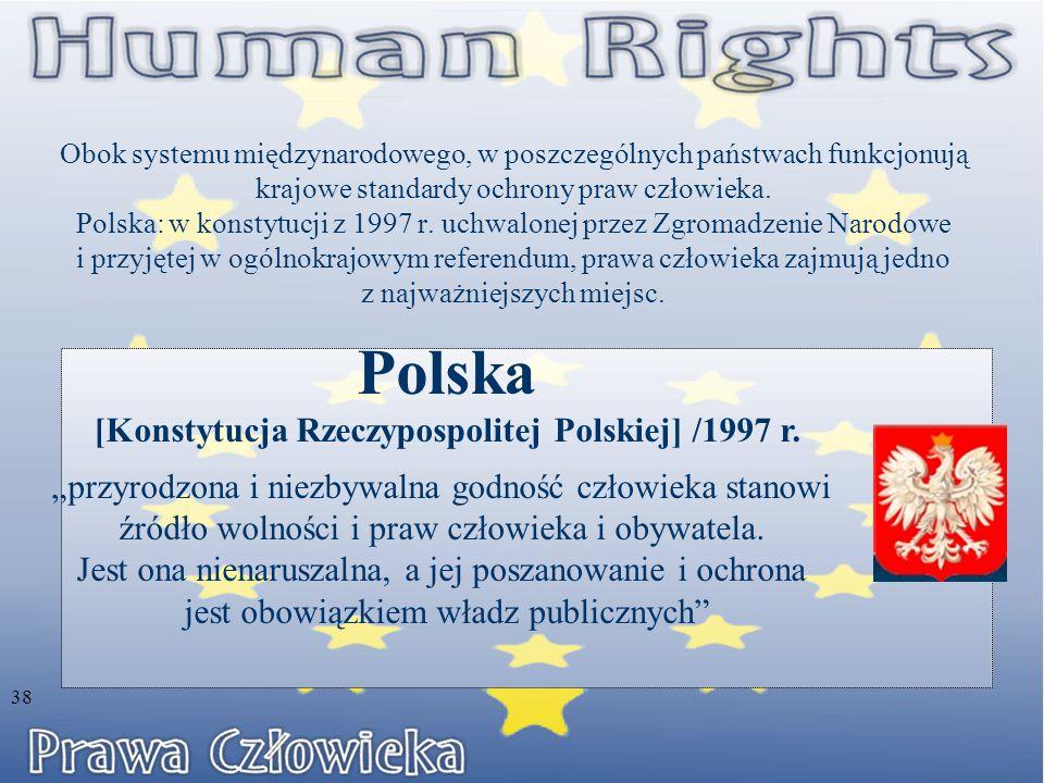 Obok systemu międzynarodowego, w poszczególnych państwach funkcjonują krajowe standardy ochrony praw człowieka.