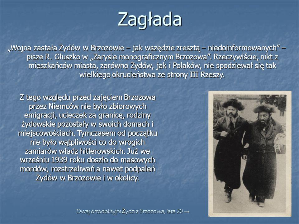 """Zagłada """"Wojna zastała Żydów w Brzozowie – jak wszędzie zresztą – niedoinformowanych"""" – pisze R. Głuszko w """"Zarysie monograficznym Brzozowa"""". Rzeczywi"""