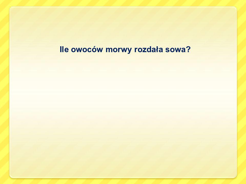 Ile owoców morwy rozdała sowa?