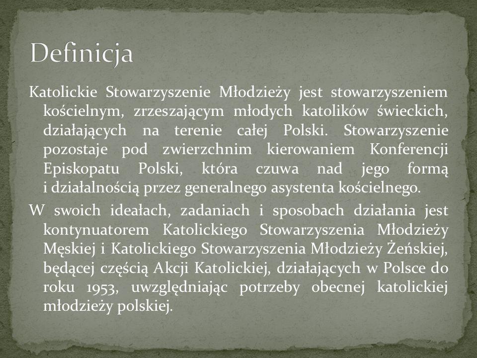 Katolickie Stowarzyszenie Młodzieży jest stowarzyszeniem kościelnym, zrzeszającym młodych katolików świeckich, działających na terenie całej Polski.
