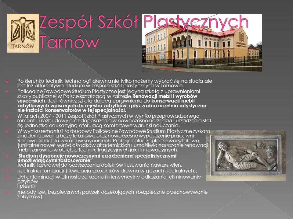  Po kierunku technik technologii drewna nie tylko możemy wybrać się na studia ale jest też alternatywa- studium w zespole szkół plastycznych w Tarnow