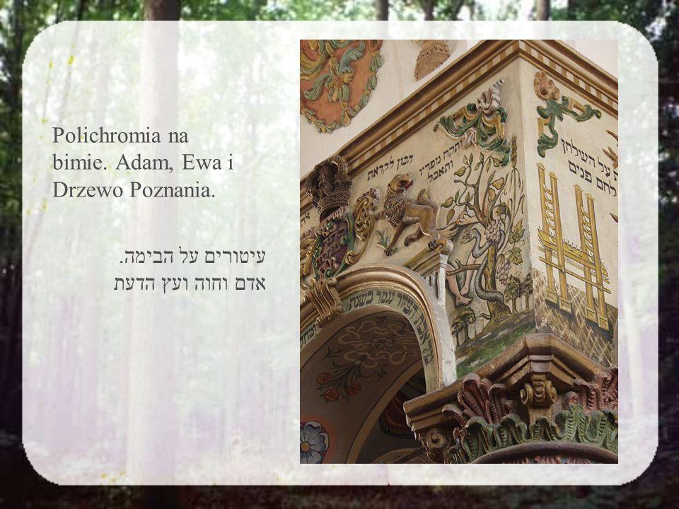 3.Figi ג. תאנה Rabi Yossi tłumaczył swoją opinię w formie paraboli.