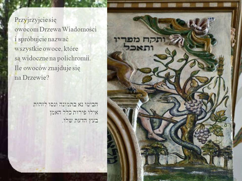 W Talmudzie znajduje się co najmniej kilka opinii dotyczących tego, jaki to był owoc.