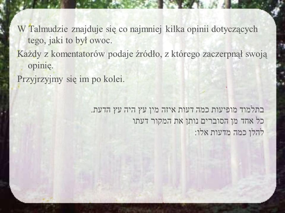 1.Orzech א.