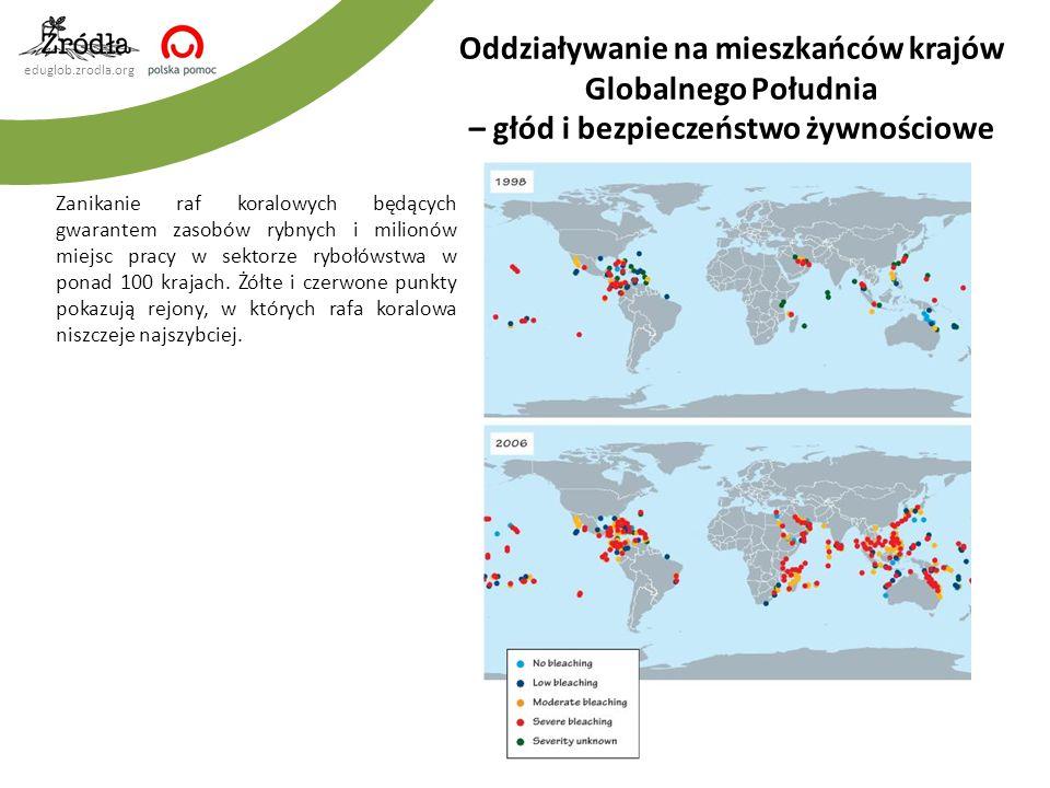 eduglob.zrodla.org Zanikanie raf koralowych będących gwarantem zasobów rybnych i milionów miejsc pracy w sektorze rybołówstwa w ponad 100 krajach.