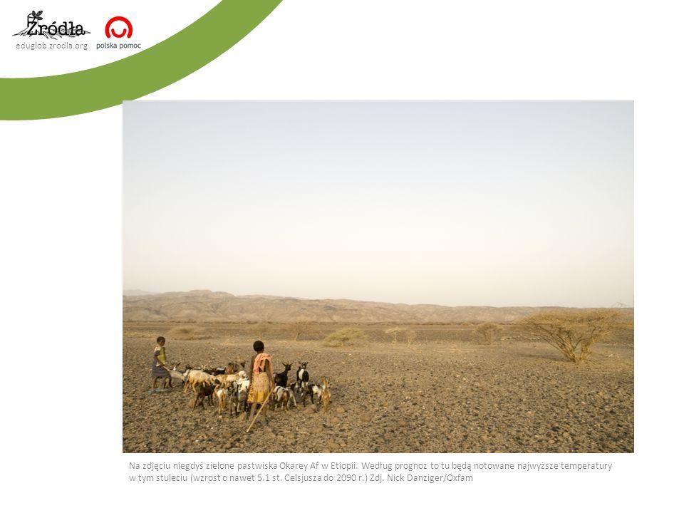 eduglob.zrodla.org Na zdjęciu niegdyś zielone pastwiska Okarey Af w Etiopii. Według prognoz to tu będą notowane najwyższe temperatury w tym stuleciu (