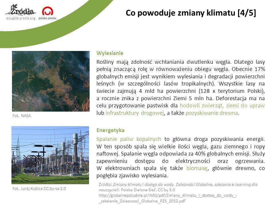 eduglob.zrodla.org Wylesianie Rośliny mają zdolność wchłaniania dwutlenku węgla. Dlatego lasy pełnią znaczącą rolę w równoważeniu obiegu węgla. Obecni