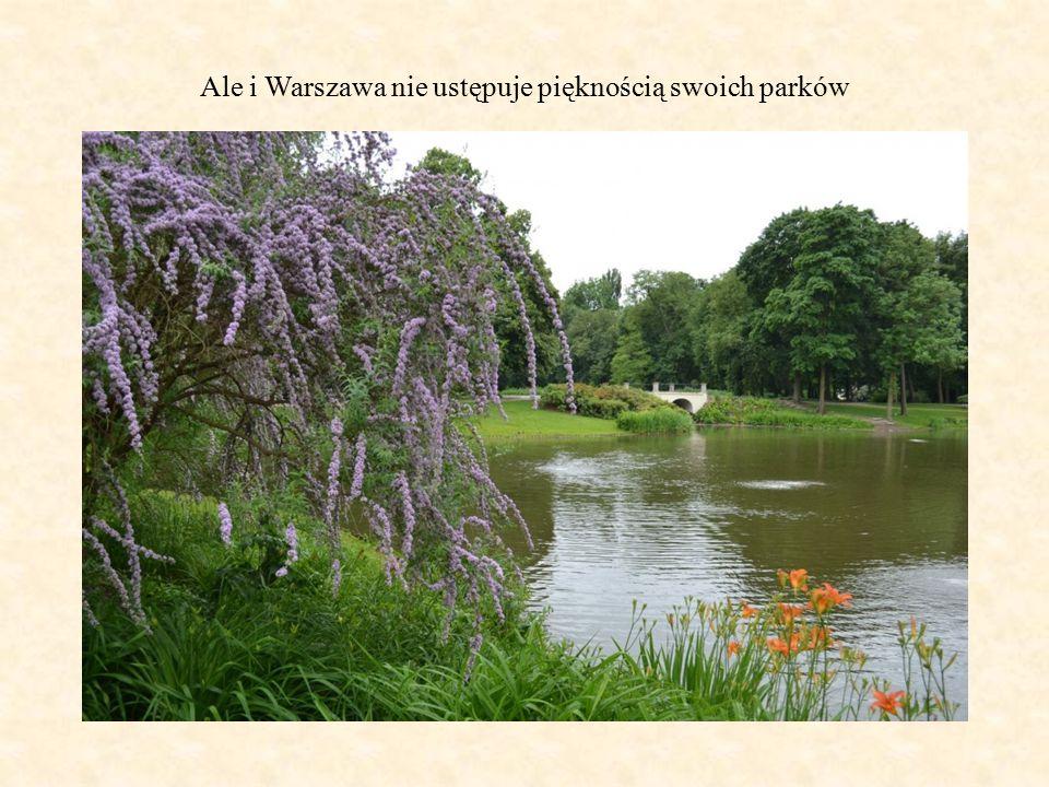 Ale i Warszawa nie ustępuje pięknością swoich parków