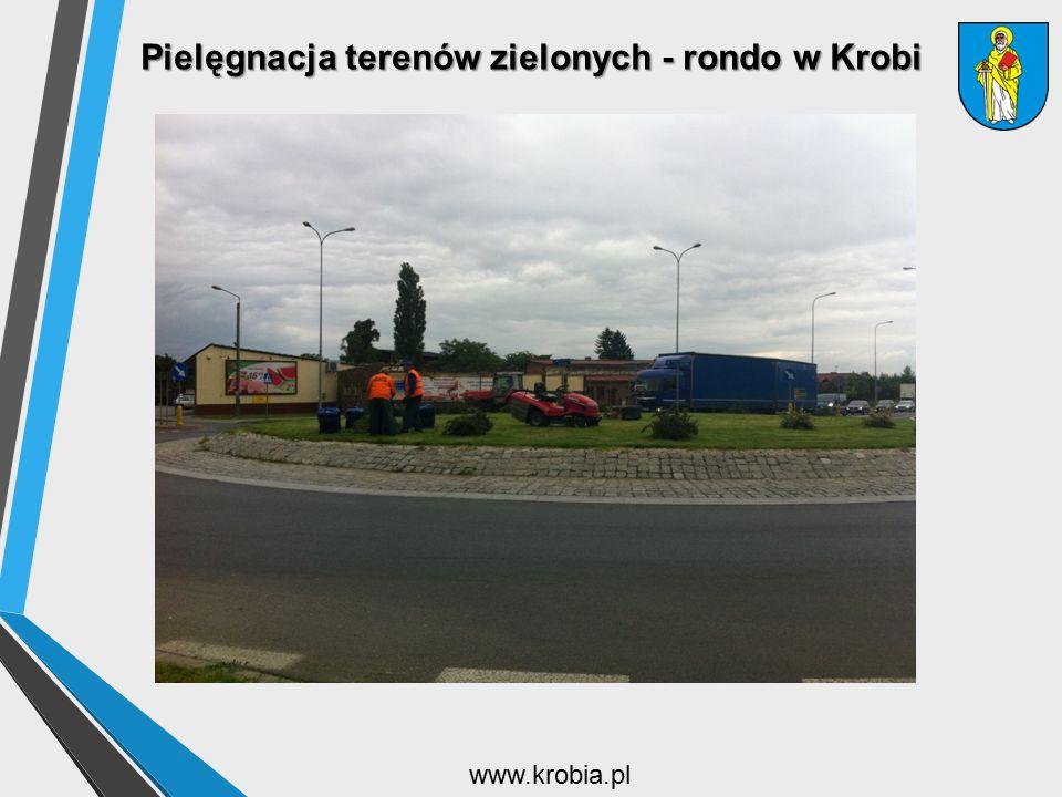 Pielęgnacja terenów zielonych - rondo w Krobi www.krobia.pl