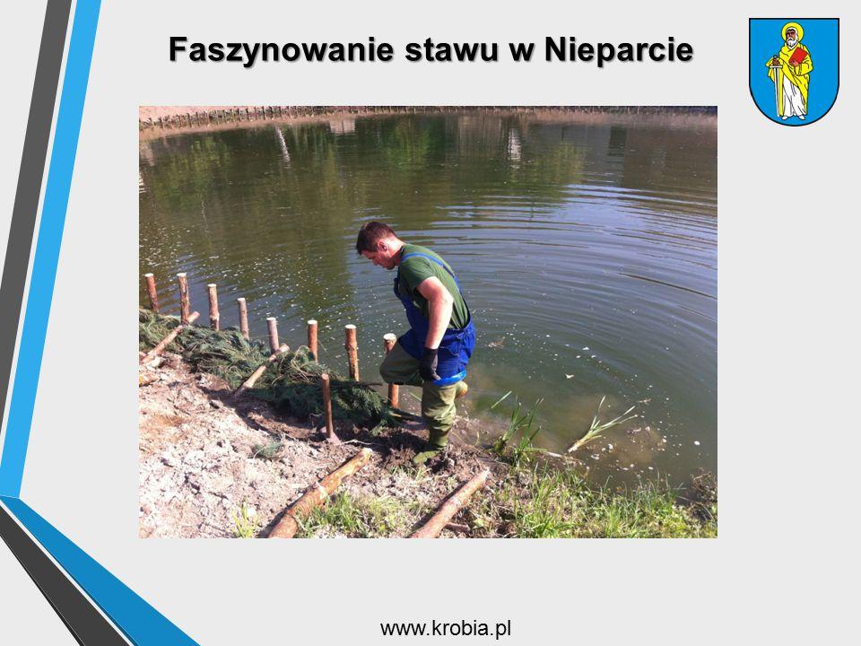 Faszynowanie stawu w Nieparcie www.krobia.pl