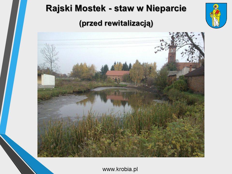 Rajski Mostek - staw w Nieparcie (przed rewitalizacją) www.krobia.pl