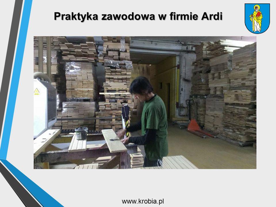 Praktyka zawodowa w firmie Ardi www.krobia.pl