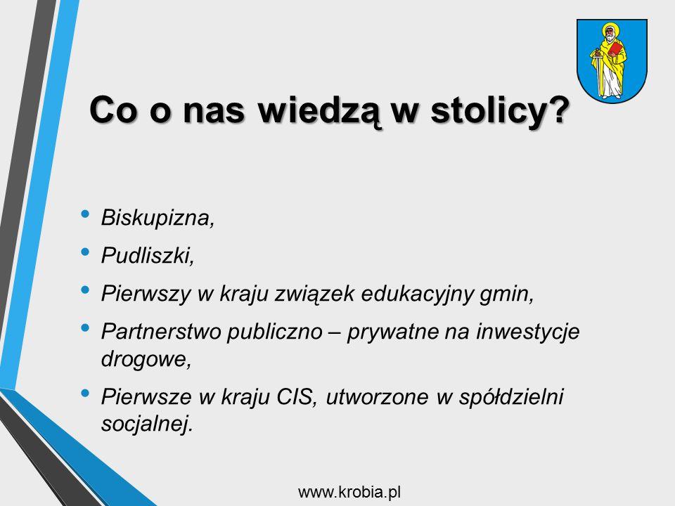 Co o nas wiedzą w stolicy? Biskupizna, Pudliszki, Pierwszy w kraju związek edukacyjny gmin, Partnerstwo publiczno – prywatne na inwestycje drogowe, Pi