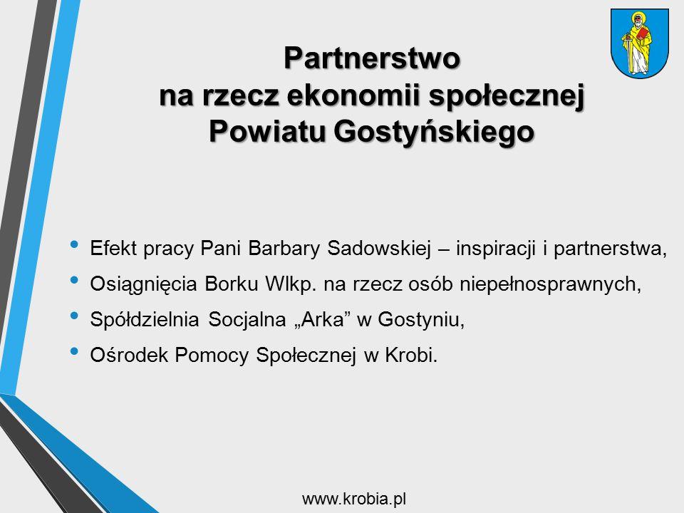 Partnerstwo na rzecz ekonomii społecznej Powiatu Gostyńskiego Efekt pracy Pani Barbary Sadowskiej – inspiracji i partnerstwa, Osiągnięcia Borku Wlkp.