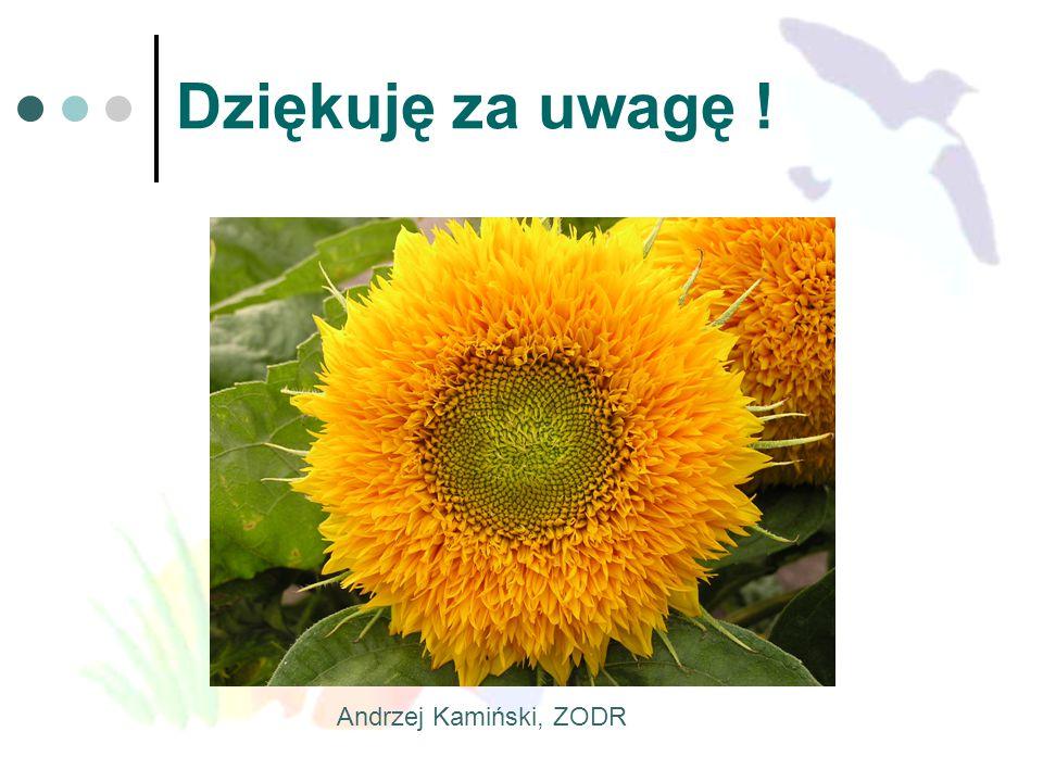 Dziękuję za uwagę ! Andrzej Kamiński, ZODR