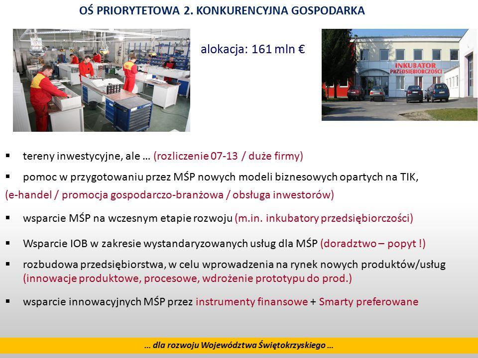 8  tereny inwestycyjne, ale … (rozliczenie 07-13 / duże firmy)  pomoc w przygotowaniu przez MŚP nowych modeli biznesowych opartych na TIK, (e-handel