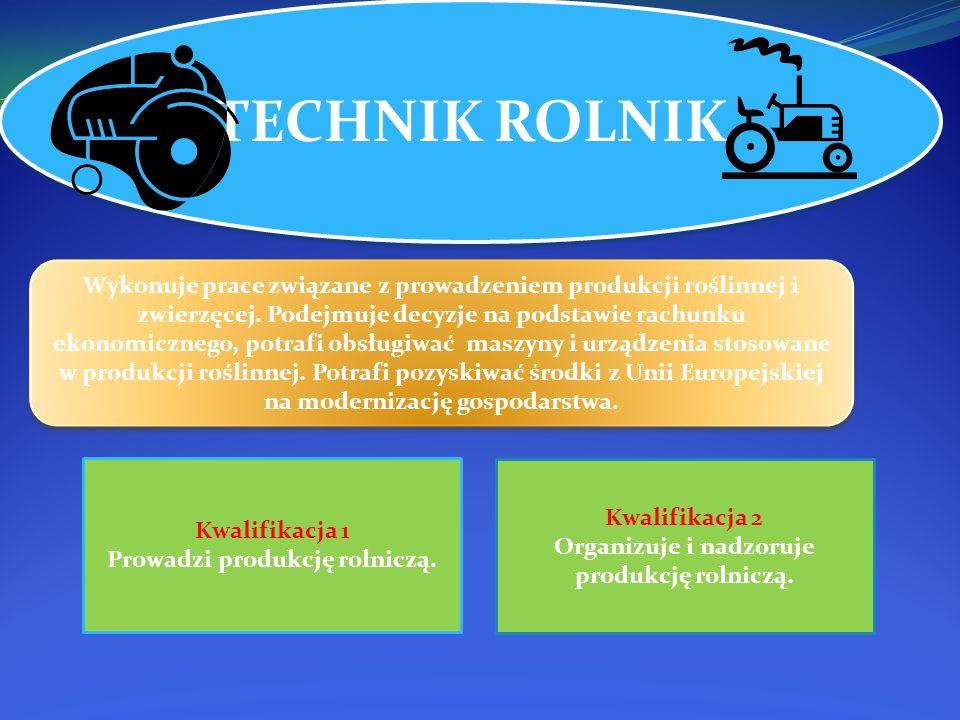 TECHNIK ROLNIK Wykonuje prace związane z prowadzeniem produkcji roślinnej i zwierzęcej.