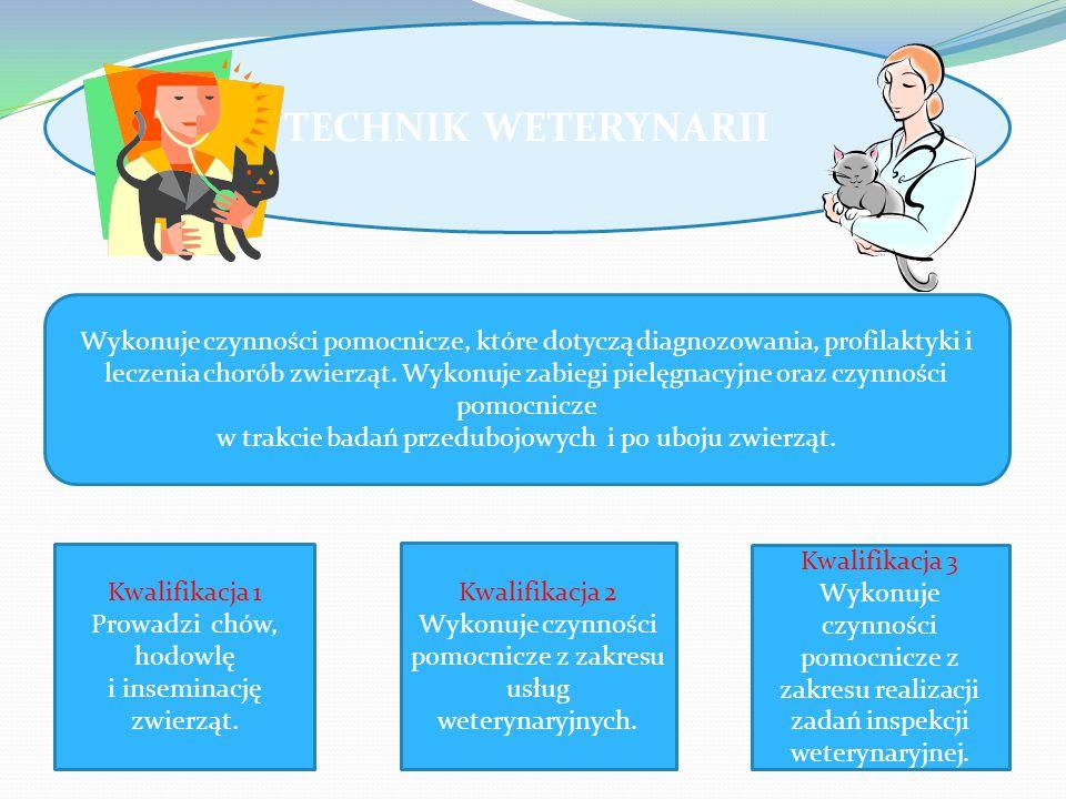 TECHNIK WETERYNARII Wykonuje czynności pomocnicze, które dotyczą diagnozowania, profilaktyki i leczenia chorób zwierząt.