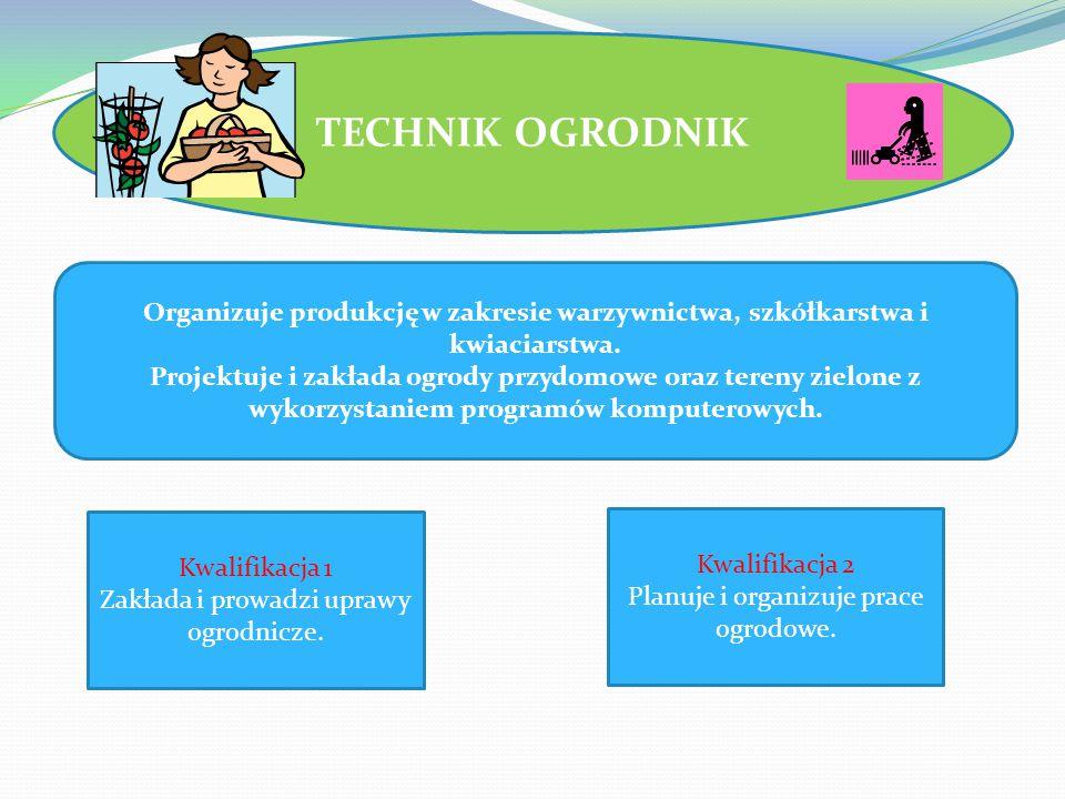 TECHNIK OGRODNIK Organizuje produkcję w zakresie warzywnictwa, szkółkarstwa i kwiaciarstwa.