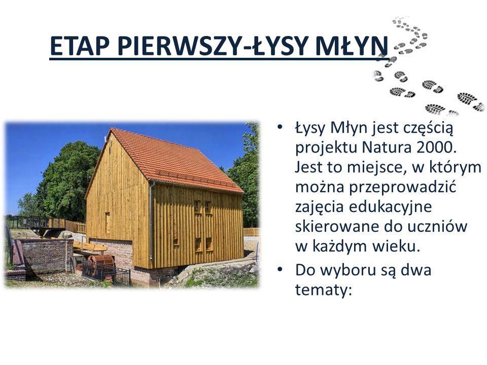 ETAP PIERWSZY-ŁYSY MŁYN Łysy Młyn jest częścią projektu Natura 2000. Jest to miejsce, w którym można przeprowadzić zajęcia edukacyjne skierowane do uc