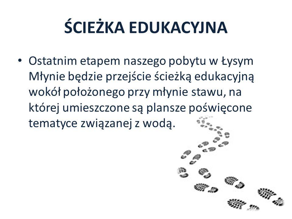 ŚCIEŻKA EDUKACYJNA Ostatnim etapem naszego pobytu w Łysym Młynie będzie przejście ścieżką edukacyjną wokół położonego przy młynie stawu, na której umi