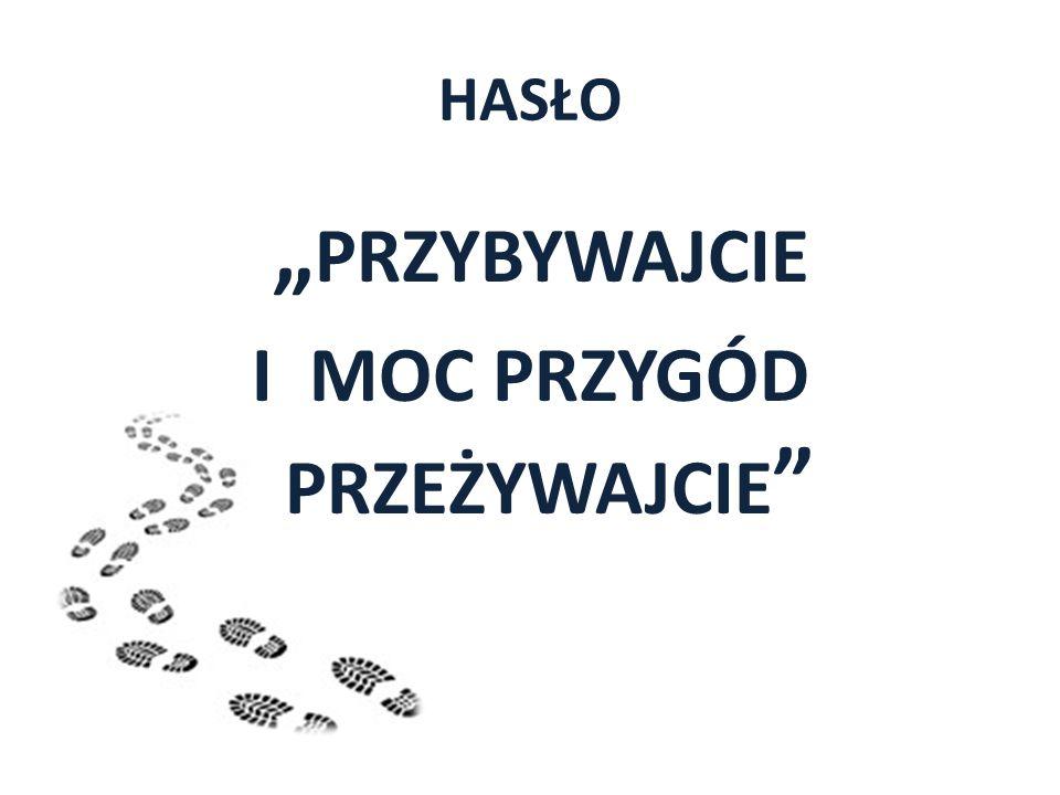 Dziewicza Góra stanowi element moreny czołowej stadiału poznańskiego 2 km na wschód od Doliny Warty.