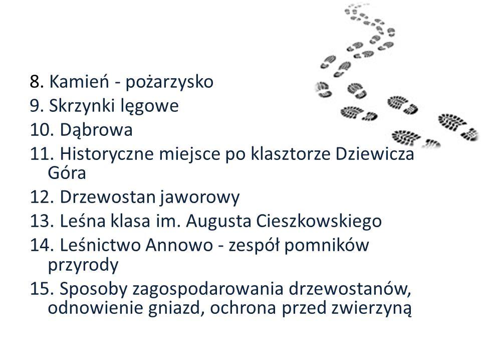 8. Kamień - pożarzysko 9. Skrzynki lęgowe 10. Dąbrowa 11. Historyczne miejsce po klasztorze Dziewicza Góra 12. Drzewostan jaworowy 13. Leśna klasa im.