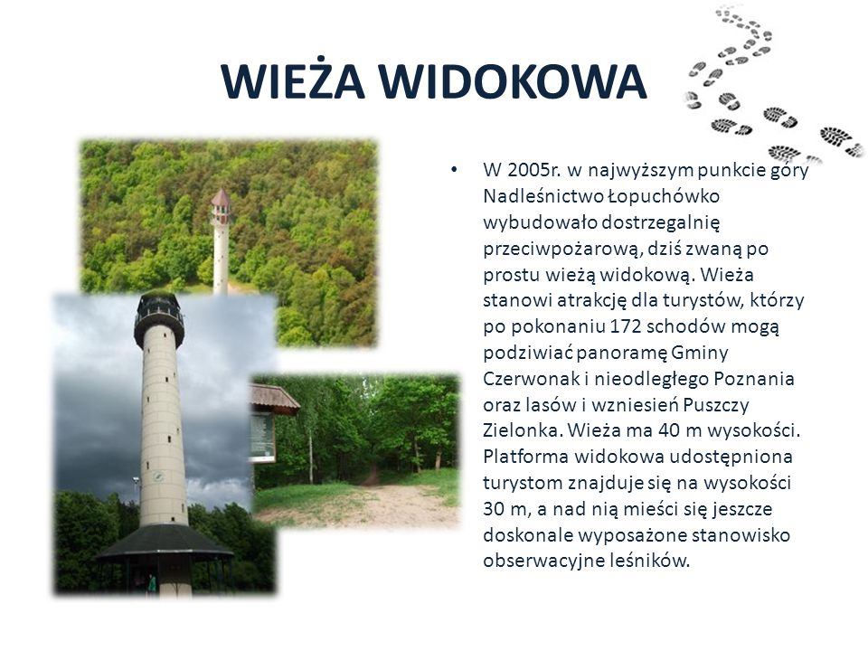 WIEŻA WIDOKOWA W 2005r. w najwyższym punkcie góry Nadleśnictwo Łopuchówko wybudowało dostrzegalnię przeciwpożarową, dziś zwaną po prostu wieżą widokow