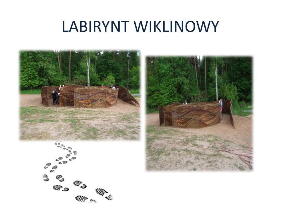 LABIRYNT WIKLINOWY