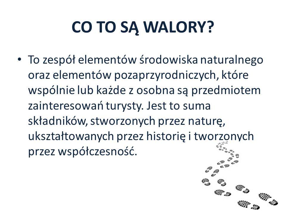 CO TO SĄ WALORY? To zespół elementów środowiska naturalnego oraz elementów pozaprzyrodniczych, które wspólnie lub każde z osobna są przedmiotem zainte