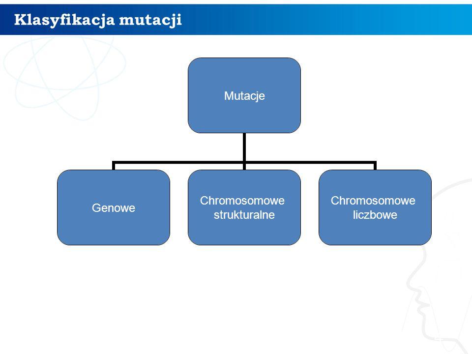 Klasyfikacja mutacji 4 Mutacje Genowe Chromosomowe strukturalne Chromosomowe liczbowe