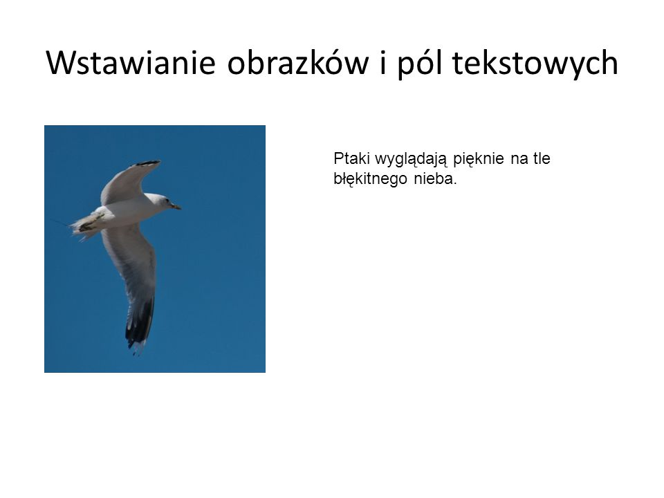 Wstawianie obrazków i pól tekstowych Ptaki wyglądają pięknie na tle błękitnego nieba.