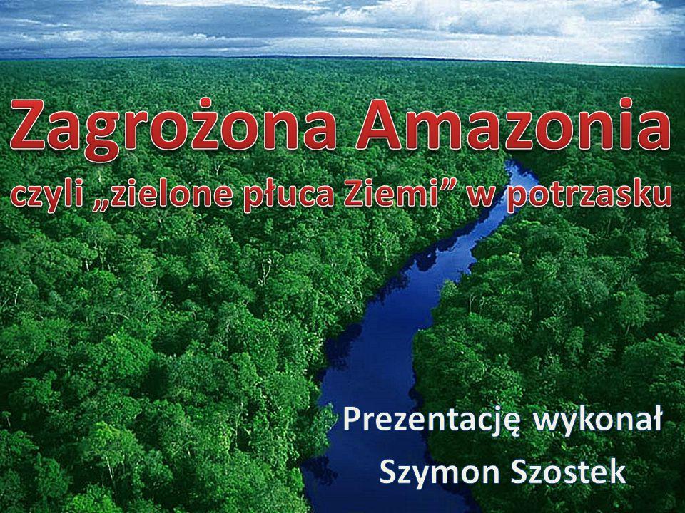 Piranie – drapieżne ryby słodkowodneDelfiny słodkowodne Anakonda zielonaJaguar – największy drapieżnik Amazonii