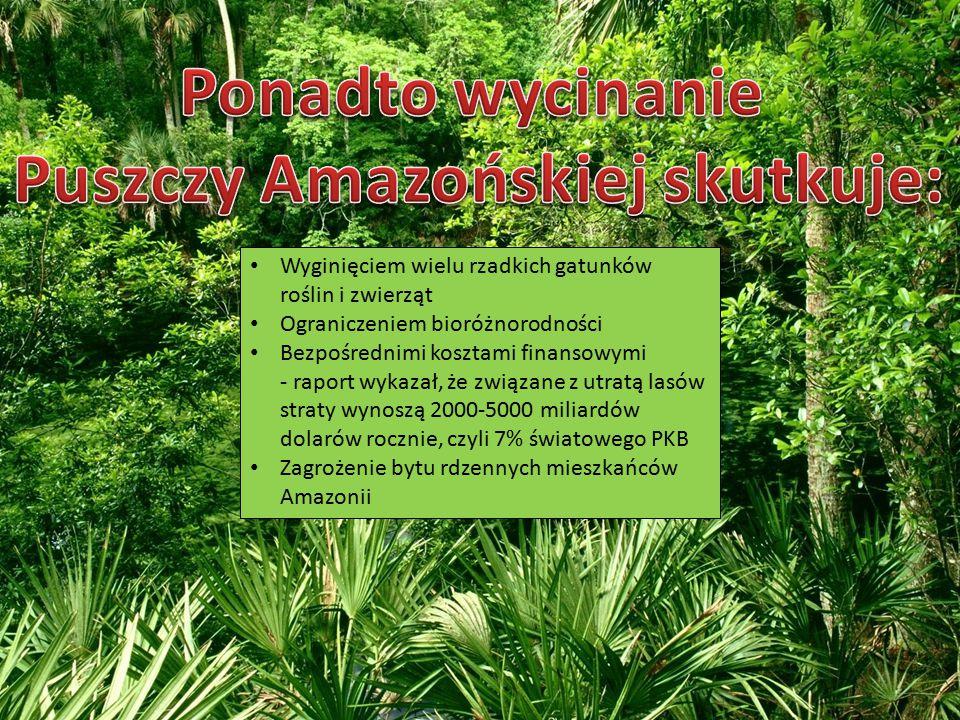 Wyginięciem wielu rzadkich gatunków roślin i zwierząt Ograniczeniem bioróżnorodności Bezpośrednimi kosztami finansowymi - raport wykazał, że związane z utratą lasów straty wynoszą 2000-5000 miliardów dolarów rocznie, czyli 7% światowego PKB Zagrożenie bytu rdzennych mieszkańców Amazonii