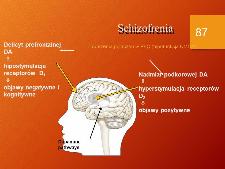 Dowody na słuszność hipotezy dopaminowej Leczenie Leczenie Neuroleptyki blokują receptory DA Neuroleptyki blokują receptory DA Redukcja objawów schizofrenii Redukcja objawów schizofrenii Amfetamina powoduje wzrost DA Amfetamina powoduje wzrost DA Nasilenie objawów psychotycznych Nasilenie objawów psychotycznych Psychozy eksperymentalne Psychozy eksperymentalne Psychozy po fenmetrazynie Psychozy po fenmetrazynie L-Dopa powoduje wzrost DA L-Dopa powoduje wzrost DA Objawy psychotyczne Objawy psychotyczne 86
