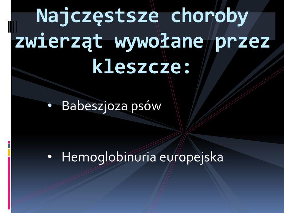 Najczęstsze choroby zwierząt wywołane przez kleszcze: Babeszjoza psów Hemoglobinuria europejska