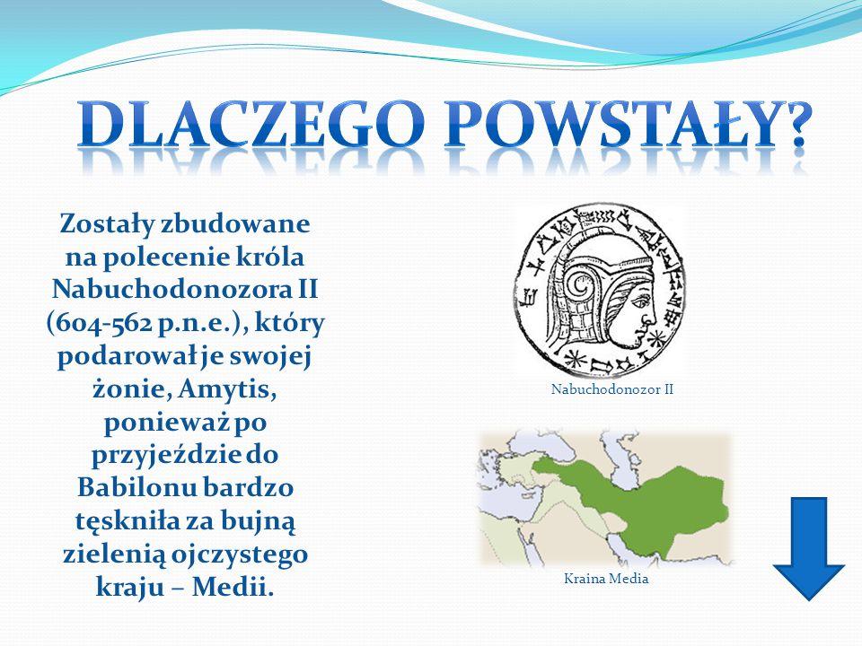 Zostały zbudowane na polecenie króla Nabuchodonozora II (604-562 p.n.e.), który podarował je swojej żonie, Amytis, ponieważ po przyjeździe do Babilonu