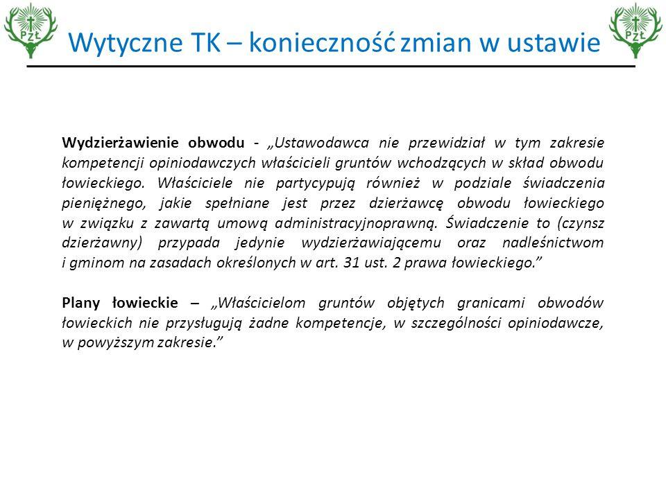 Ocena projektu przez Konstytucjonalistę prof.