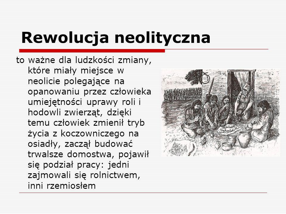 Rewolucja neolityczna to ważne dla ludzkości zmiany, które miały miejsce w neolicie polegające na opanowaniu przez człowieka umiejętności uprawy roli