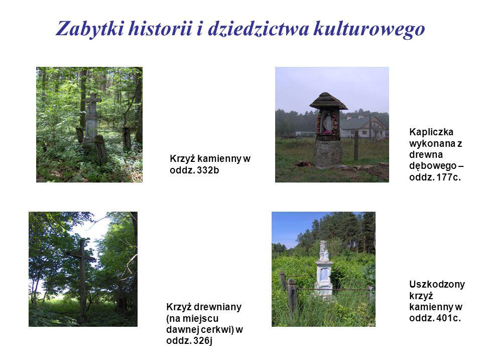Zabytki historii i dziedzictwa kulturowego Krzyż kamienny w oddz. 332b Krzyż drewniany (na miejscu dawnej cerkwi) w oddz. 326j Kapliczka wykonana z dr