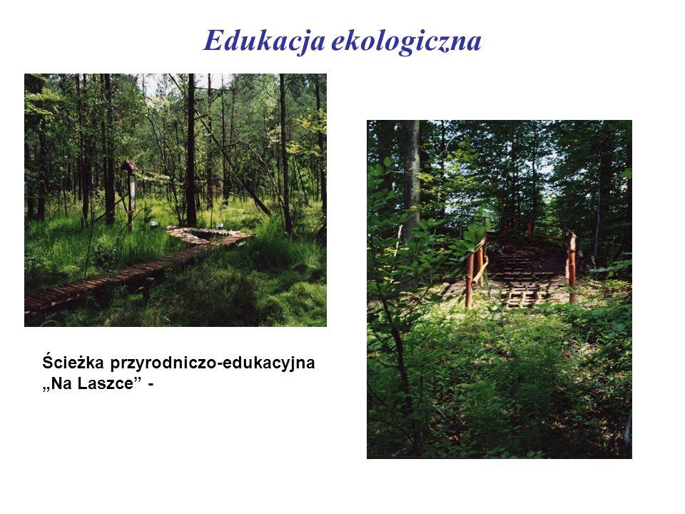 """Edukacja ekologiczna Ścieżka przyrodniczo-edukacyjna """"Na Laszce"""" -"""
