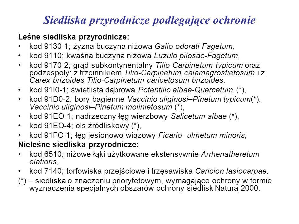 . Leśne siedliska przyrodnicze: kod 9130-1; żyzna buczyna niżowa Galio odorati-Fagetum, kod 9110; kwaśna buczyna niżowa Luzulo pilosae-Fagetum, kod 91