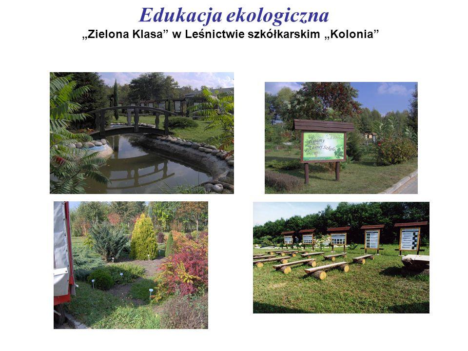 """Edukacja ekologiczna """"Zielona Klasa"""" w Leśnictwie szkółkarskim """"Kolonia"""""""